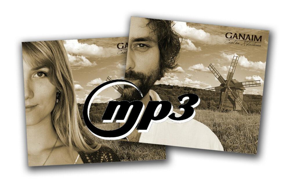 cover-staffel-mp3