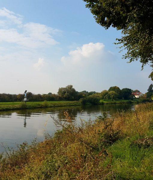 Die Weser bei Nienburg